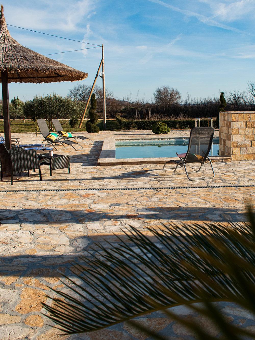 AP Villa Pristeg - Pool area and palm tree