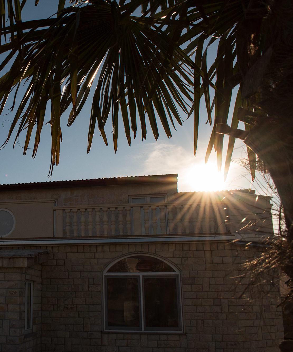 AP Villa Pristeg - Front with palm tree